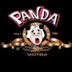 Panda Show Radio live