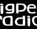 Pigpen-Radio
