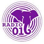 live Radio 016, online radio Radio 016, radio online Radio 016,