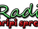 Radio Aripi Spre Cer, Radio online Radio Aripi Spre Cer, Online radio Radio Aripi Spre Cer
