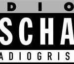 online radio Radio Grischa, radio online Radio Grischa,