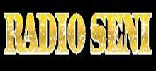 Radio Seni Serbia, live Radio Seni Serbia, live broadcasting Radio Seni Serbia,