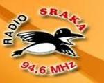 radio-sraka