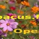 Abacus-fm-Opera