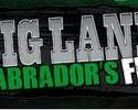 Big-Land-Labradors