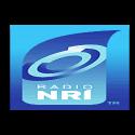 Radio-NRI-Distuned