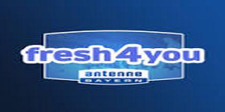 online radio Antenne Bayern Fresh4You, radio online Antenne Bayern Fresh4You,