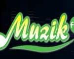 Radio Online Muzik FM,