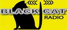 online Black Cat Radio,