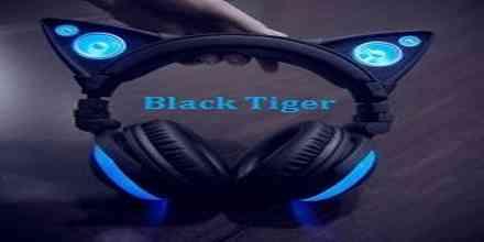 online radio Black Tiger Recordings
