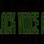 Black Voice Radio, Online Black Voice Radio, live broadcasting Black Voice Radio, Radio USA