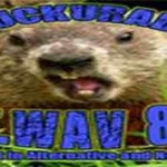 ChuckU AltWav 80s, Online radio ChuckU AltWav 80s, Live broadcasting ChuckU AltWav 80s, Radio USA