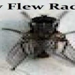 online radio Fly Flew Radio, radio online Fly Flew Radio,
