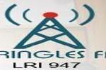 online radio Pringles FM, radio online Pringles FM,