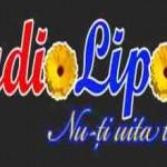 Radio Lipova, Online Radio Lipova, live broadcasting Radio Lipova