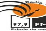 Radio Targu Jiu, Online Radio Targu Jiu, live broadcasting Radio Targu Jiu