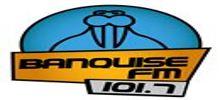 Live online radio Banquise FM
