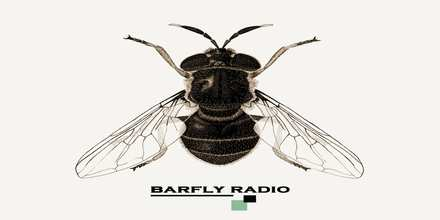 Barfly Radio, Online Barfly Radio, Live broadcasting Barfly Radio, Greece