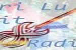 Live online Bri Lu Git Radio