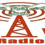 online Eclectic Vibrations Radio, live Eclectic Vibrations Radio,