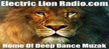 online Electric Lion Radio
