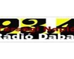 Radio Dabas, online Radio Dabas, Live broadcasting Radio Dabas, Hungary