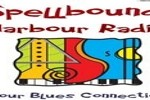 Spellbound Harbour Radio, Online radio Spellbound Harbour Radio, Live broadcasting Spellbound Harbour Radio, New Zealand