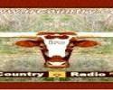 IrCountry Radio online