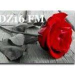 DZ16 FM live