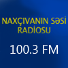 Naxcivanin Sesi Radio Live