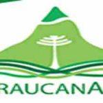 Live Araucana FM 95.9