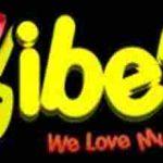 Vibee-Radio live
