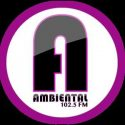 Ambiental FM live