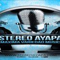 Stereo Ayapa live