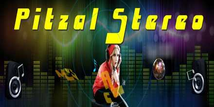Pitzal Stereo live