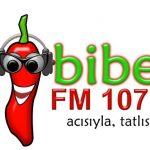 Biber FM live