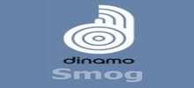 Dinamo FM Smog live