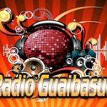 Radio Guaibasul live
