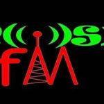 Mosin FM live