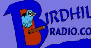 Birdhill Radio live