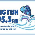 online radio Big Fish 95.5 FM