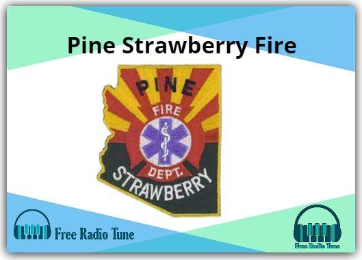 Pine Strawberry