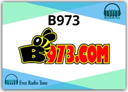 B973 Radio